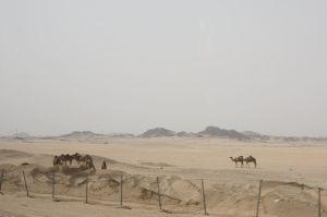 2013_0523_Jeddah_1