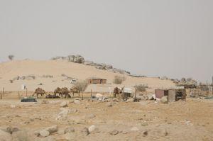 2013_0523_Jeddah_3